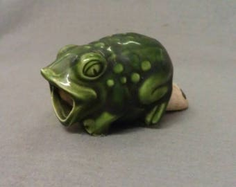 Green Frog Plant Waterer
