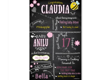 Baby Shower Facts Poster - Bees & Flowers - Baby Girl - Chalkboard poster