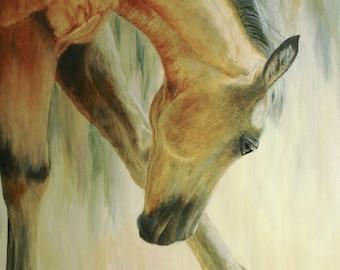 Original Buckskin Horse Oil Painting, Original Horse Oil Painting, Young Horse Oil Painting, 18 x 24 inches
