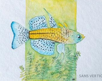 Spotted Blue-Eye Fish Illustration [original]