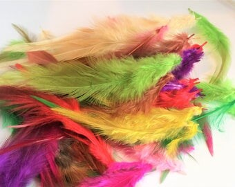 10 pcs Beautiful mix colors Rooster Tail Feathers 10-15cm room Crafts Decoration