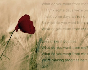 Take That Wall Art Print Lyrics - What do you want from me?