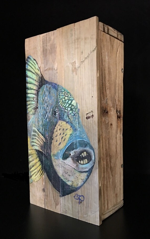 Custom Hand drawn Parrot Fish Stash Box perfect gift for that special angler in your life