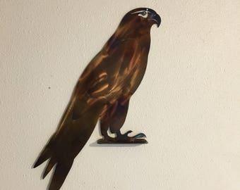 Hawk Silhouette AN22