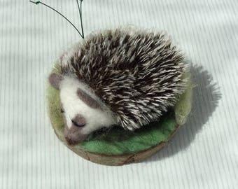 Needle Felted Sleeping Hedgehog Sculpture