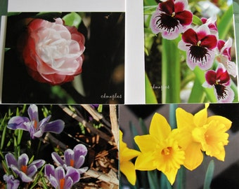 Folded Blank Note Cards, Flower Photo Cards, Camellia Card, Orchid Photo Card, Crocus Photo Card, Flower Greeting Cards