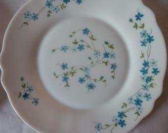 Plates Arcopal forget-me-not motifs