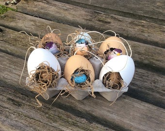 Bird Egg Ornaments