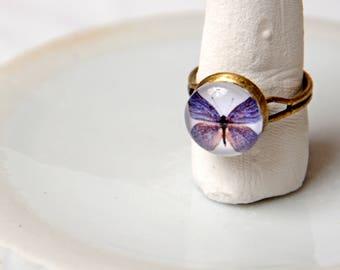Ring cabochon motif Purple Butterfly. Antique bronze. Adjustable.