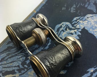 Antique 19th Century Ornate French Hunting Theme Opera Glasses, Binoculars, 1800s, Made in France
