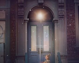 Winter Door Digital Backdrop