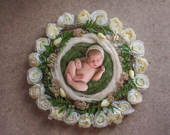 Digital Newborn Backdrop / prop - newborn basket  (Nati)