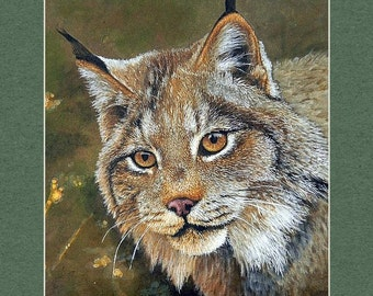 Lynx - Matted Print