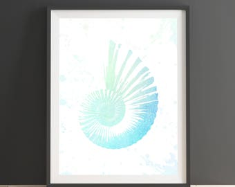 Original design seashell print