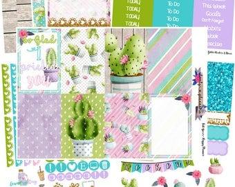 HAPPY PLANNER KIT, Pricked, Weekly Sticker Kit, Planner Stickers, Sticker Kit, Cactus Stickers, Happy Planner