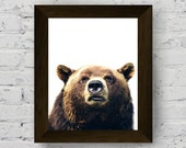 bear wall art print, woodland animal photography, animal print for nursery, baby room prints, bear poster, instant digital download