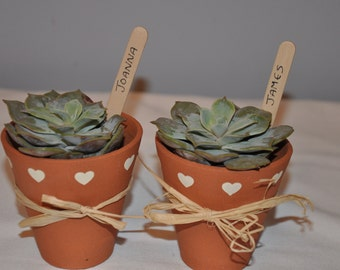 Wedding Favours - Little Terracotta Flower Pots