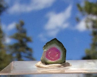 4.6 ct watermelon tourmaline slice from Kunar,Afghanistan C29