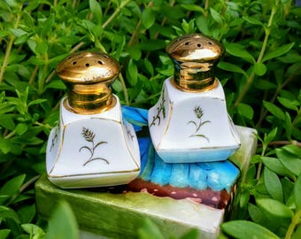 Pretty Little White and Gold Set of Salt & Pepper Shakers, Hand Painted Porcelain with Removable Brass Lids, Made in Japan