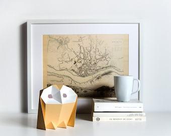 Barn Owl - DIY Paperlamp ( pre-cut papercraft kit, DIY paper lamp )