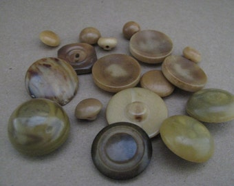 17 Vintage Vegetable Ivory Buttons Mixed Lot