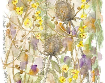 Original watercolor Thistles
