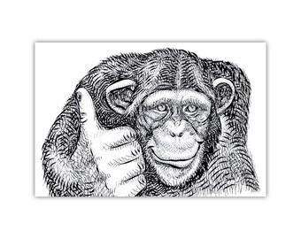 Monkey, Animal Print, Illustration, Ape, Monochrome Art, Canvas, Large Poster