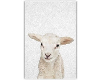 Lamb, Baby Animal Print, Nursery Art, Woodland Wall Decor, Peakaboo, Canvas, Large Poster