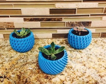 Succulent planters small but adorable - Single Order