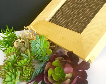Vertical Garden LIVING PICTURE KIT - Complete with plants - Gift for plant lover