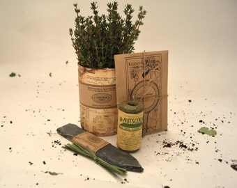 Gardener's Herb Collection: Thyme // Herb Garden // Herb Planter // Gifts for Her // Gifts for Him
