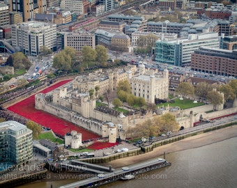 Red Poppies - Aerial View of Remembrance Day at the Tower of London - Fine Art Print