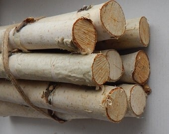 10 Birch logs Wood sticks. Birch tree. Decor for fireplace. Craft birch. White birch logs. Decoration birch. Logs for decoration. Craft logs