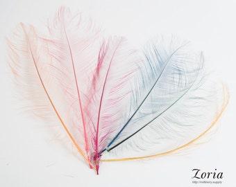 10-12 Inch Burnt Ostrich Feather Trims Per Piece   DF-BOST10