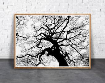 Twig Wall Art branch wall art | etsy