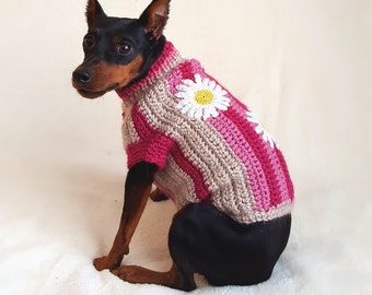 Dog clothes - jacket for dog, small dog clothes, knitted dog sweater