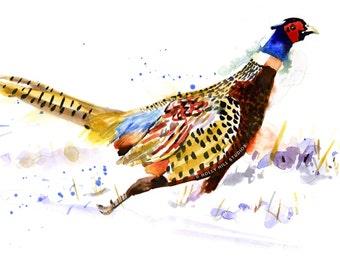 PRINT BIRD Watercolour Limited Edition, Bird Illustration. Running Pheasant.
