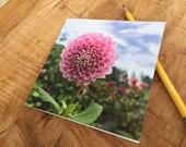 Dahlia Notecard- Pink Bloom