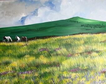 Dinas Mountain Ponies