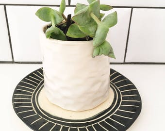 Mini White Faceted Planter