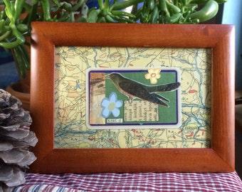 A bird collage