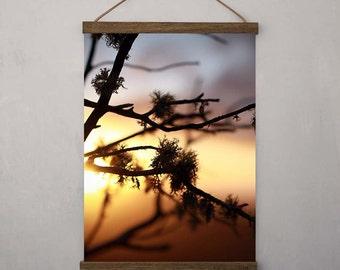 Nature Photography - Sunset