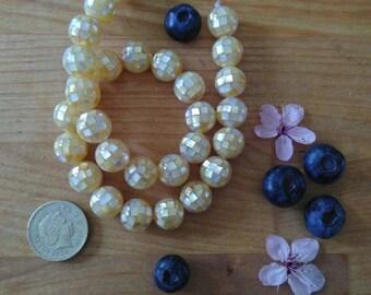 12mm Golden Mosaic' Shell Bead, 5 pieces