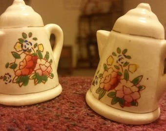 Adorable little teapot salt and pepper shakers with floral design