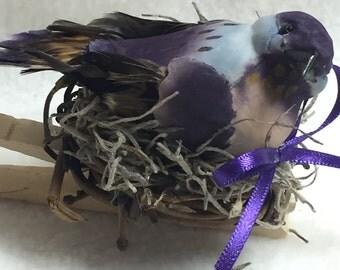 Birdclip (#012)