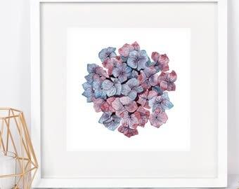 Purple Hydrangea Watercolor Square PRINT - Hydrangea art, botanical print, botanical art, botanical art prints, pink purple blue hydrangea
