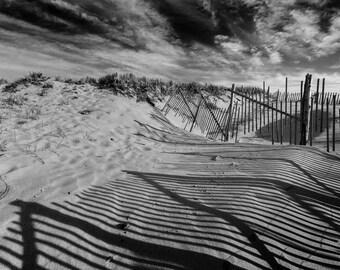 Sand Dunes, Cape Cod
