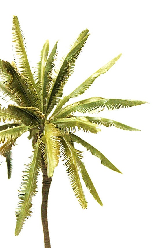 how to make coconut tree model