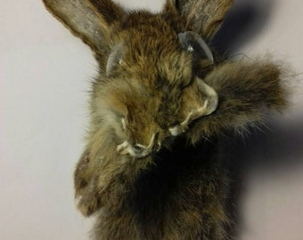 Taxidermy Bookmark, Great and Weird Gift Idea