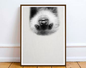 Baby Sloth art print - Black and White Baby Animal Print - Nursery Art - Printable Digital Download - wall poster print